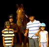 Trail Rides at Fair WInds Farm : 191 galleries with 15532 photos